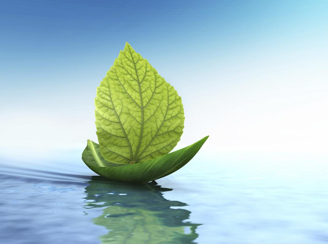 leaf_float